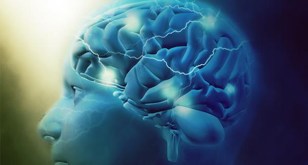 Agytérfogat és agyi kapacitás kalkulátor
