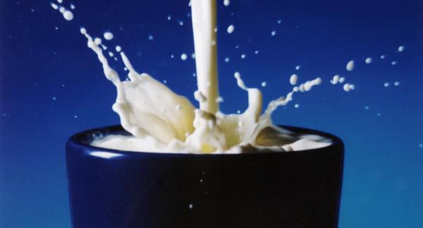 Tejtermékek, sajtok, tojás kalória tartalma
