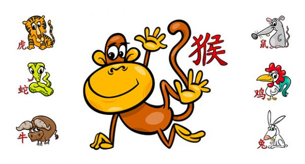 Chinese astrology calculator